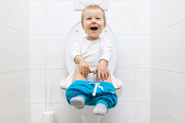 How you can fix a baby potty seat